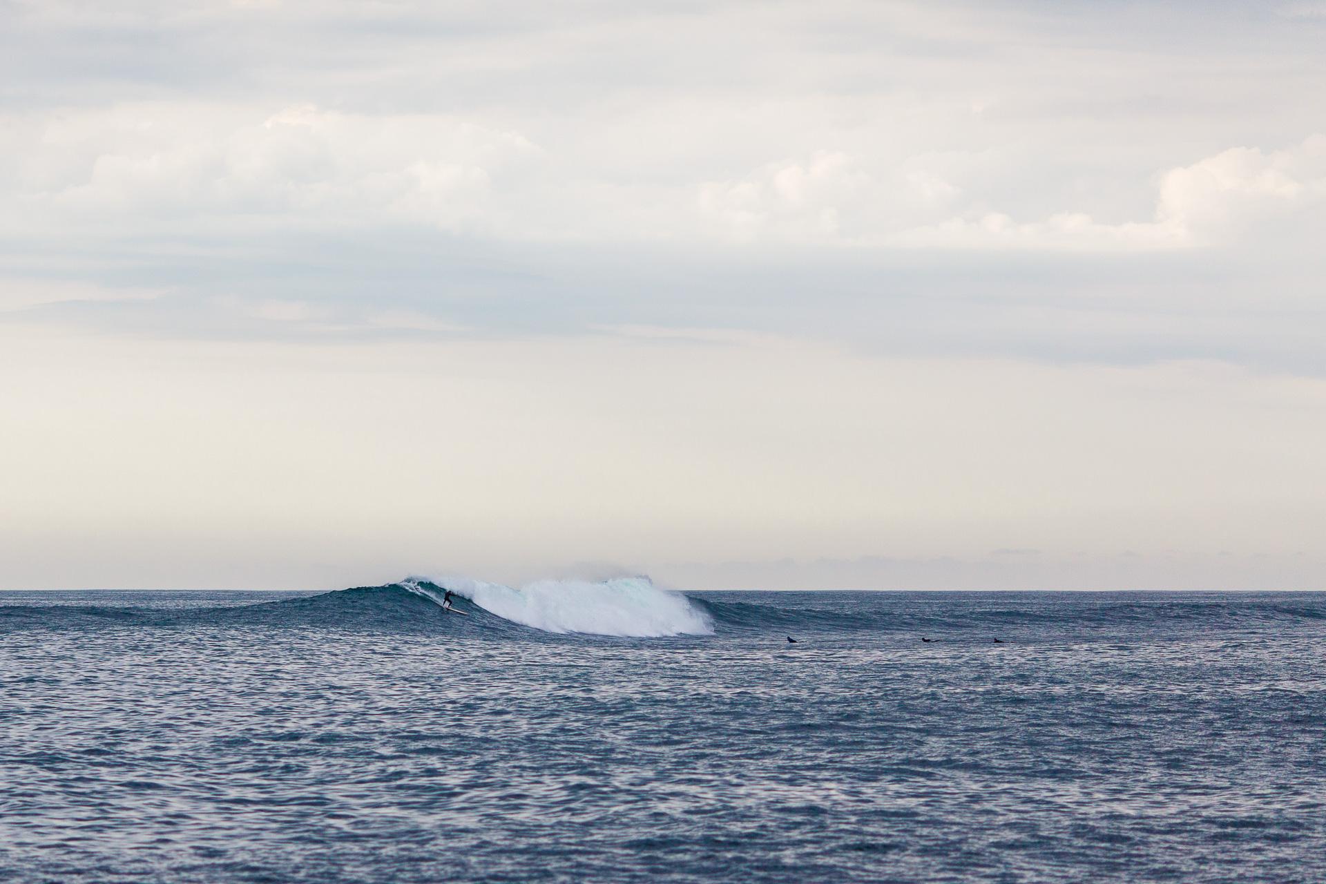 Damien-Dohmen-photographe-Ocean-23