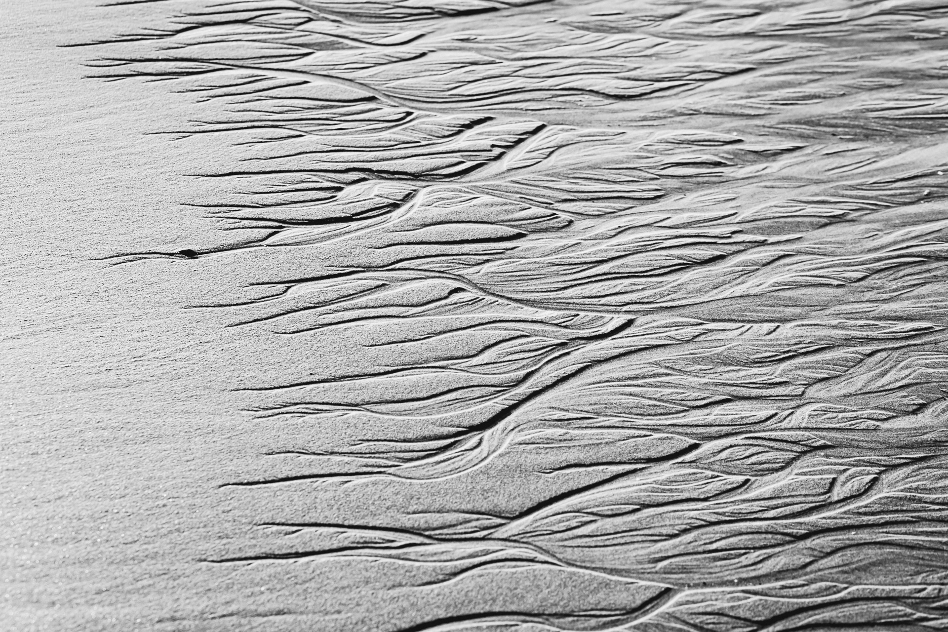 Damien-dohmen-sand-print-lx-one-17